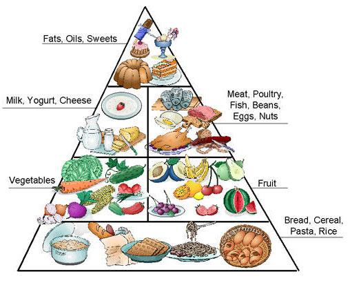 C:\Users\Наталья\Downloads\foodpyramid.jpg