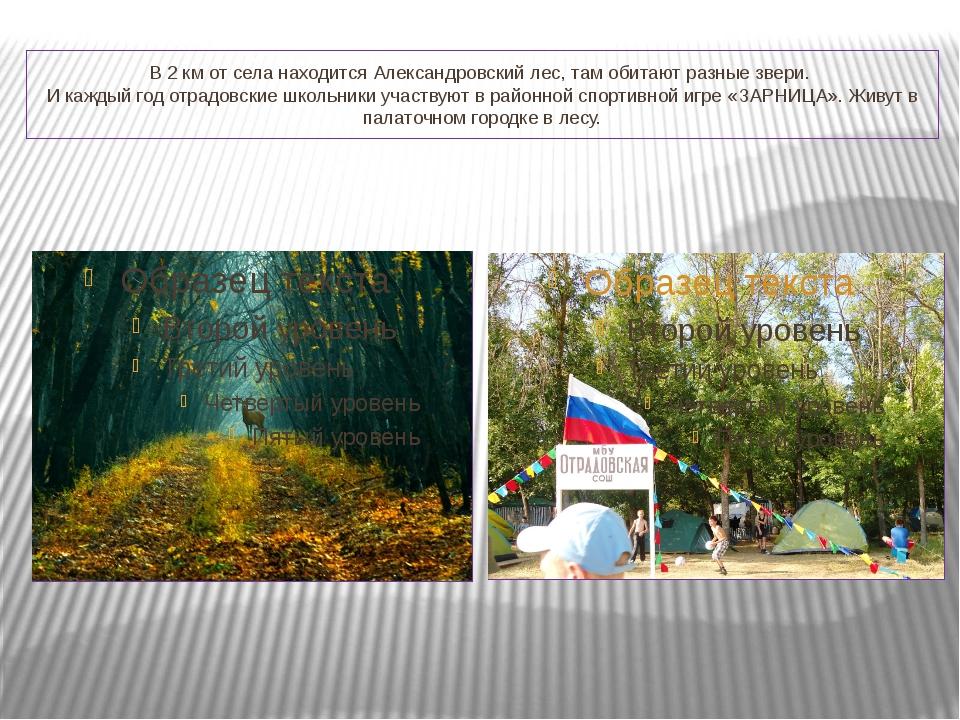 В 2 км от села находится Александровский лес, там обитают разные звери. И каж...