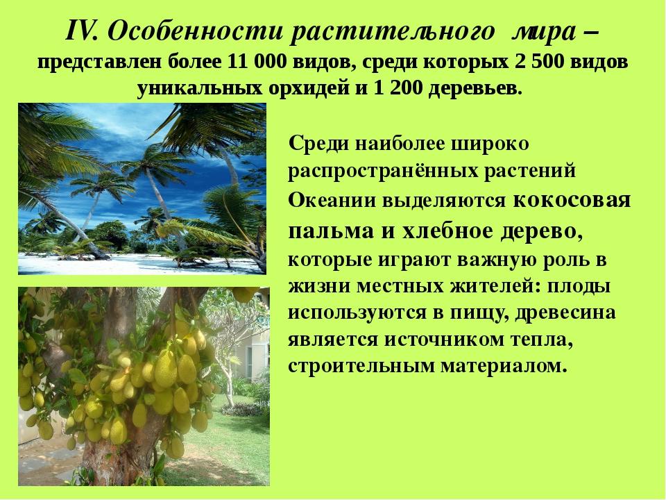 V. Особенности животного мира Новой Гвинеи - нет крупных млекопитающих. Отсу...