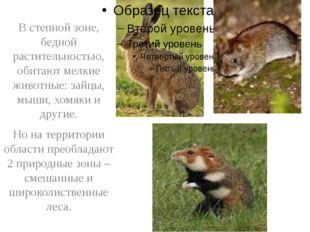 В степной зоне, бедной растительностью, обитают мелкие животные: зайцы, мыши