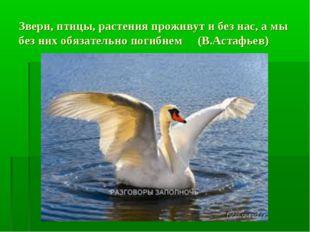 Звери, птицы, растения проживут и без нас, а мы без них обязательно погибнем
