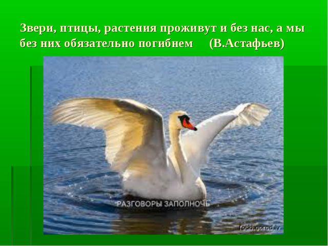 Звери, птицы, растения проживут и без нас, а мы без них обязательно погибнем...