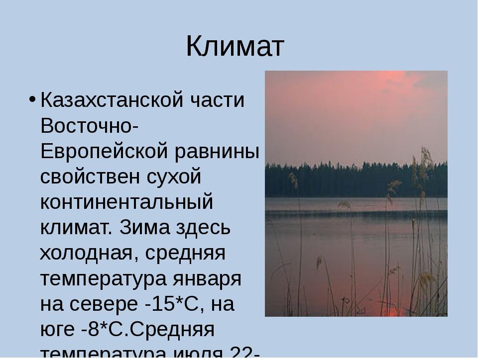 Климат Казахстанской части Восточно-Европейской равнины свойствен сухой конти...