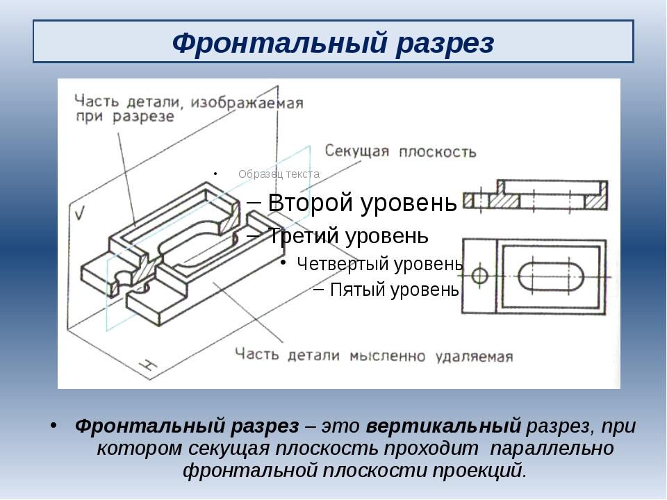 Фронтальный разрез Фронтальный разрез – это вертикальный разрез, при котором...