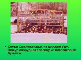 Семья Сапожниковых из деревни Удм. Вишур соорудила теплицу из пластиковых бут