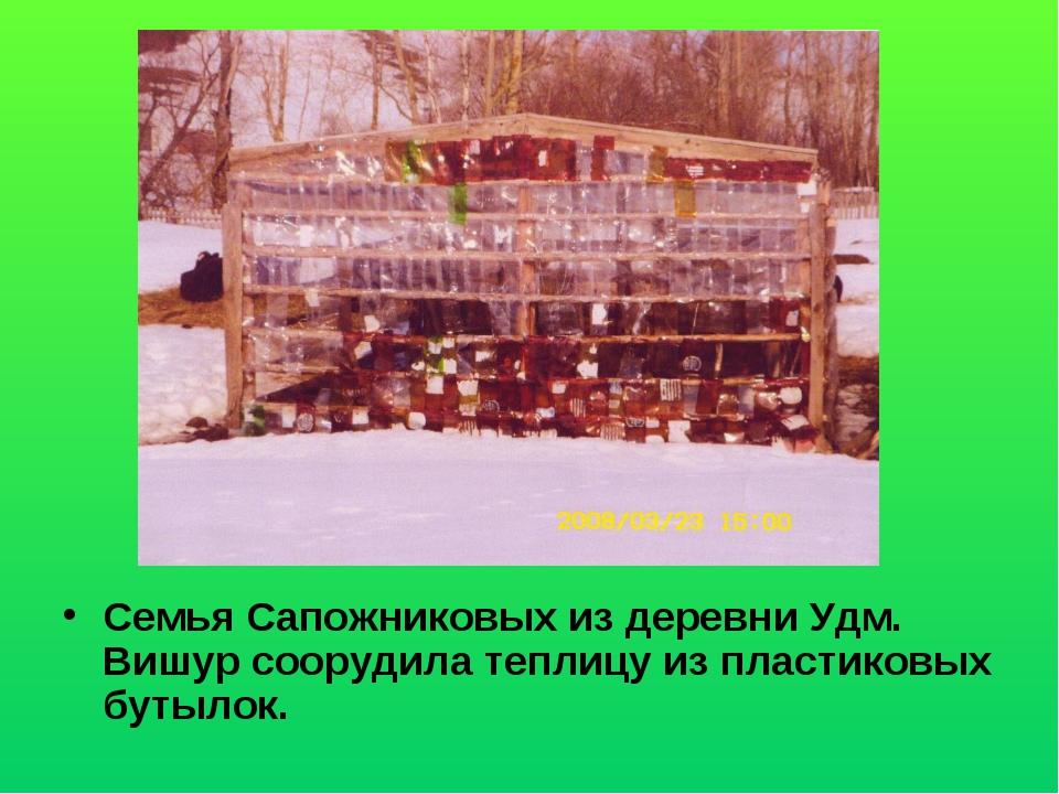 Семья Сапожниковых из деревни Удм. Вишур соорудила теплицу из пластиковых бут...