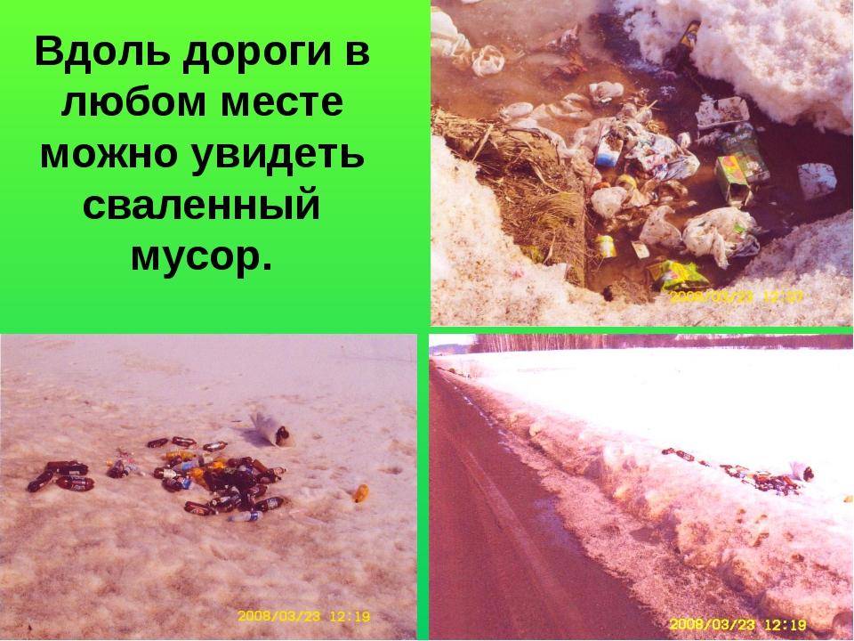 Вдоль дороги в любом месте можно увидеть сваленный мусор.