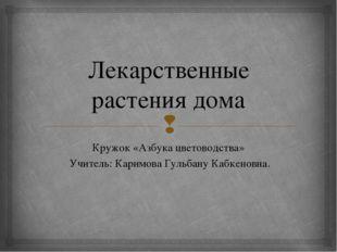 Лекарственные растения дома Кружок «Азбука цветоводства» Учитель: Каримова Гу