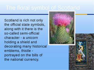 Scotland is rich not only the official state symbols, along with it there is