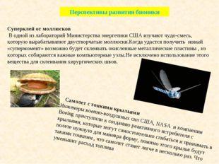 Перспективы развития бионики Суперклей от моллюсков В одной из лабораторий Ми