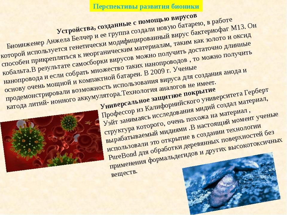 Перспективы развития бионики Устройства, созданные с помощью вирусов Биоинжен...
