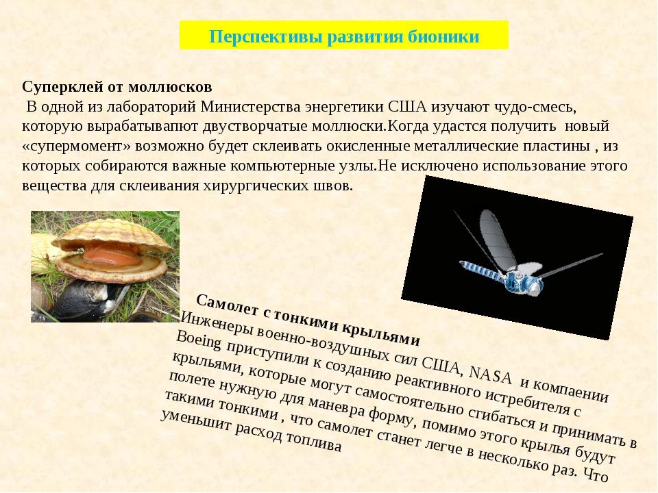 Перспективы развития бионики Суперклей от моллюсков В одной из лабораторий Ми...