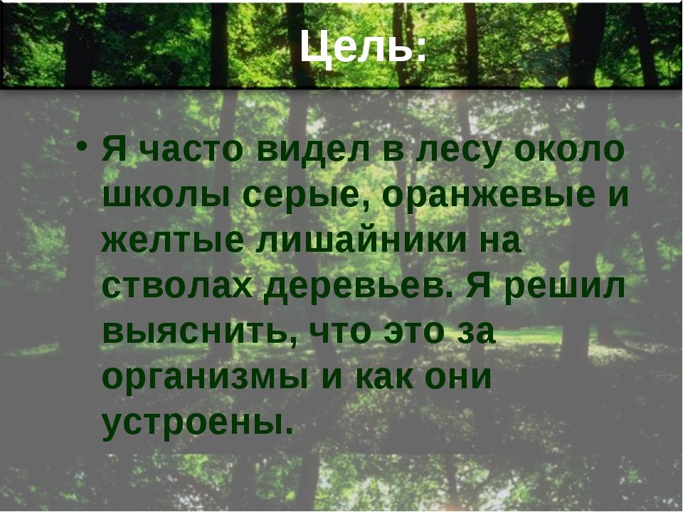 Цель: Я часто видел в лесу около школы серые, оранжевые и желтые лишайники на...