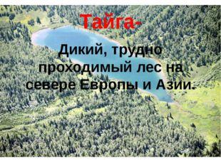 Тайга- Дикий, трудно проходимый лес на севере Европы и Азии.