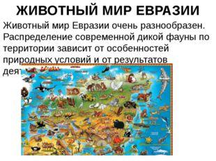 ЖИВОТНЫЙ МИР ЕВРАЗИИ Животный мир Евразии очень разнообразен. Распределение с