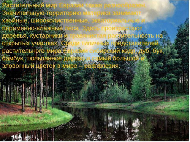 Растительный мир Евразии также разнообразен. Значительную территорию материка...