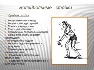 Волейбольные стойки Средняя стойка 1. Корпус наклонен вперед 2. Колени – впер