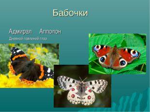 Бабочки Адмирал Апполон Дневной павлиний глаз