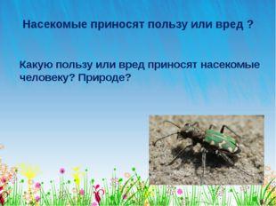 Насекомые приносят пользу или вред ? Какую пользу или вред приносят насекомые