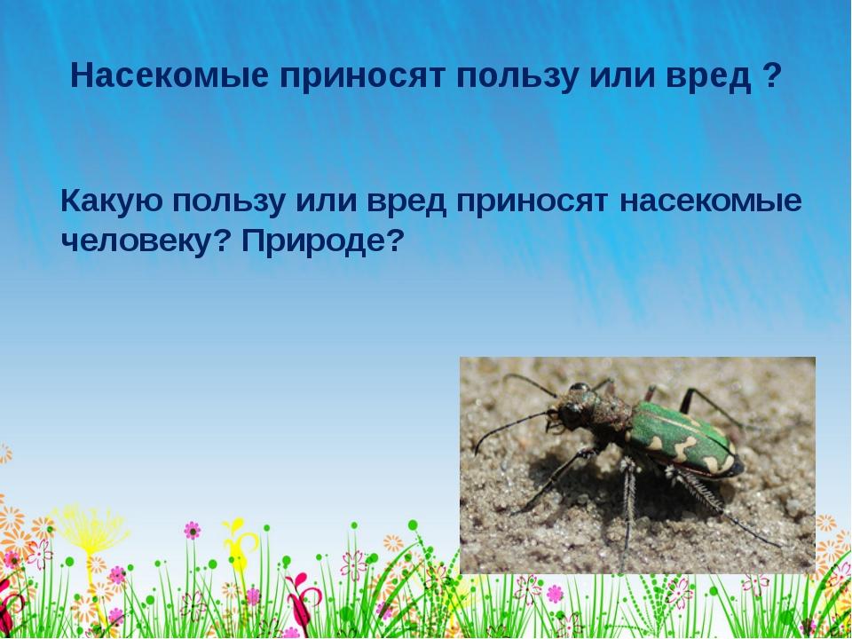 Насекомые приносят пользу или вред ? Какую пользу или вред приносят насекомые...