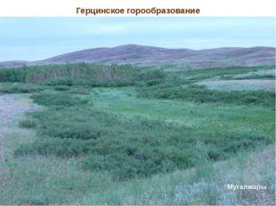Герцинское горообразование Туранская равнина – эпигерцинская складчатость Муг