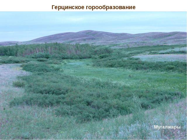 Герцинское горообразование Туранская равнина – эпигерцинская складчатость Муг...