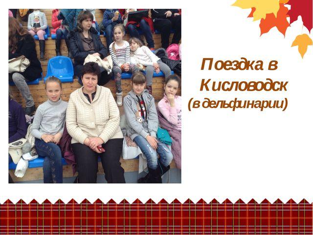 Поездка в Кисловодск (в дельфинарии)