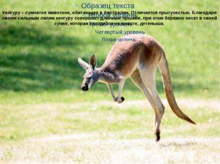 Кенгуру – сумчатое животное, обитающее в Австралии. Отличается прыгучестью. Б