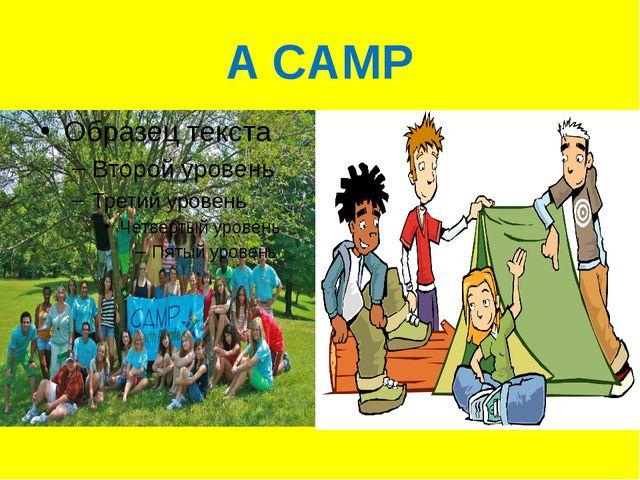 A CAMP