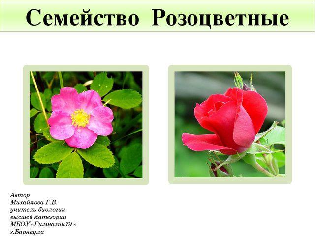 Семейство Розоцветные Автор Михайлова Г.В. учитель биологии высшей категории...