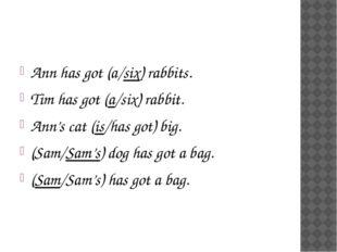 Ann has got (a/six) rabbits. Tim has got (a/six) rabbit. Ann's cat (is/has g