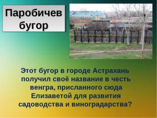 Этот бугор в городе Астрахань получил своё название в честь венгра, присланно