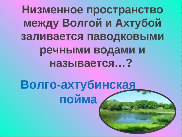 Низменное пространство между Волгой и Ахтубой заливается паводковыми речными...
