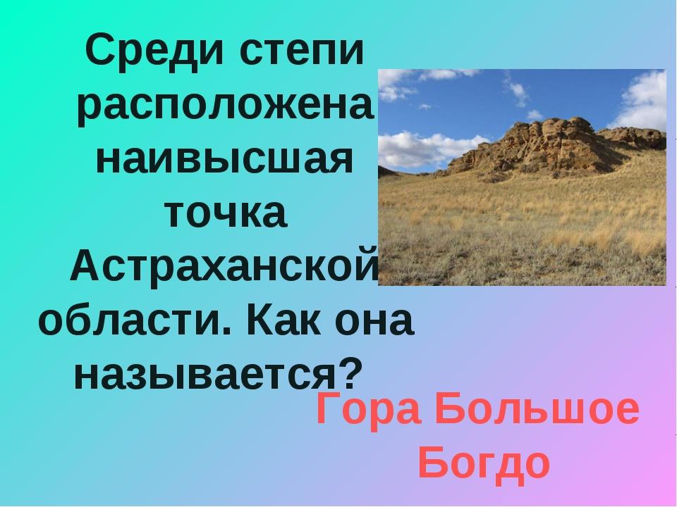 Среди степи расположена наивысшая точка Астраханской области. Как она называе...