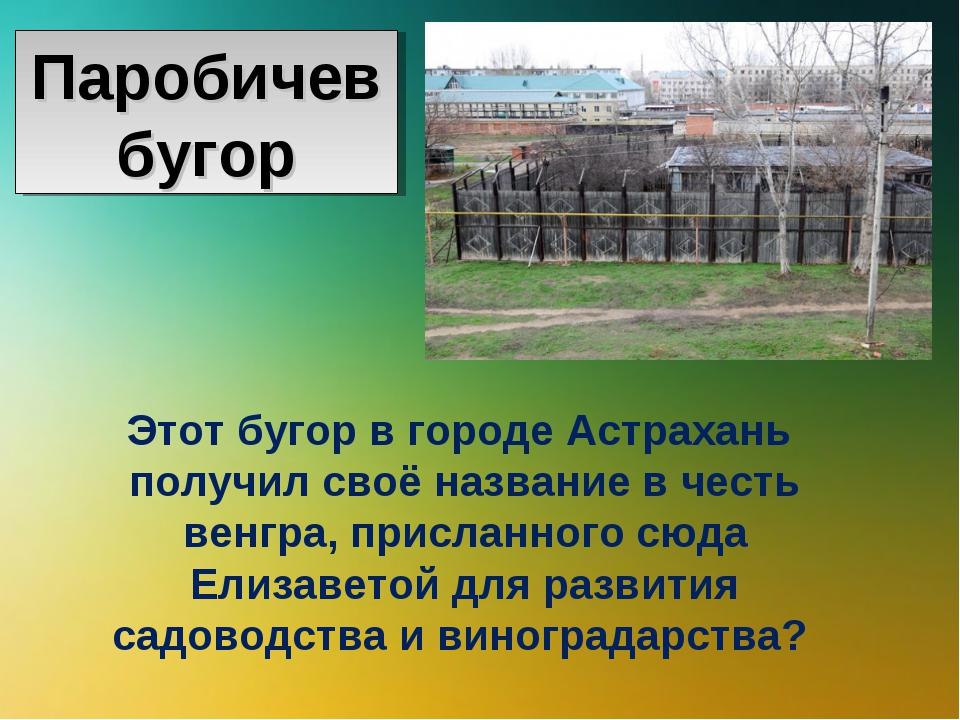 Этот бугор в городе Астрахань получил своё название в честь венгра, присланно...