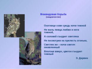 Межвидовая борьба (паразитизм) Злой овод в теле лошади, быка, Оленя, поселяет