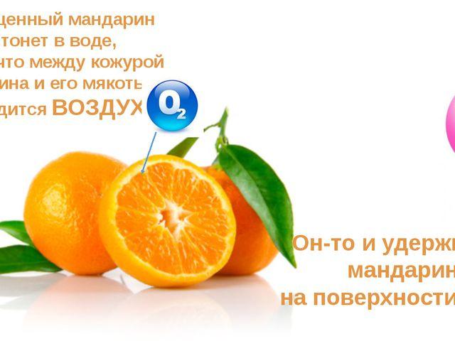 Неочищенный мандарин не тонет в воде, потому что между кожурой мандарина и ег...