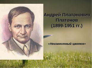 Андрей Платонович Платонов (1899-1951 гг.) «Неизвестный цветок»