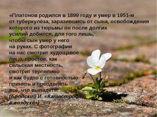 «Платонов родился в 1899 году и умер в 1951-м от туберкулёза, заразившись от