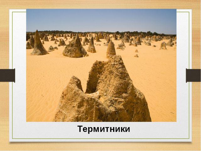 Термитники