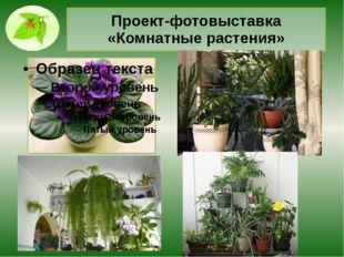 Проект-фотовыставка «Комнатные растения»