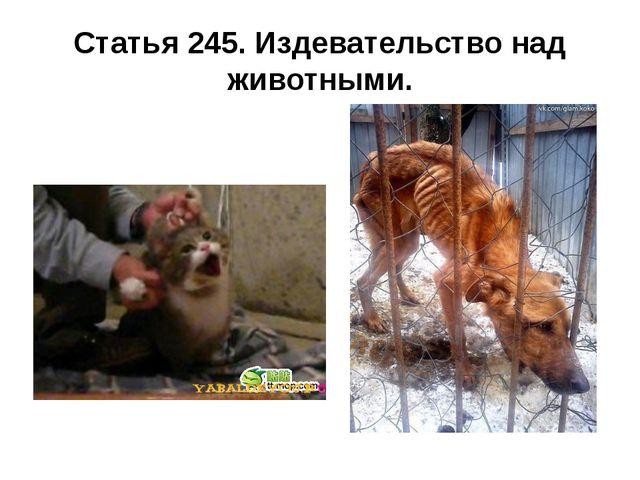 Статья 245. Издевательство над животными.