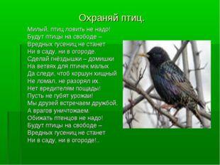 Охраняй птиц. Милый, птиц ловить не надо! Будут птицы на свободе – Вредных гу