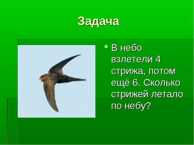 Задача В небо взлетели 4 стрижа, потом ещё 6. Сколько стрижей летало по небу?