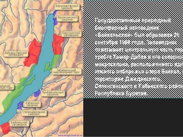 Государственный природный биосферный заповедник «Байкальский» был образован 2...