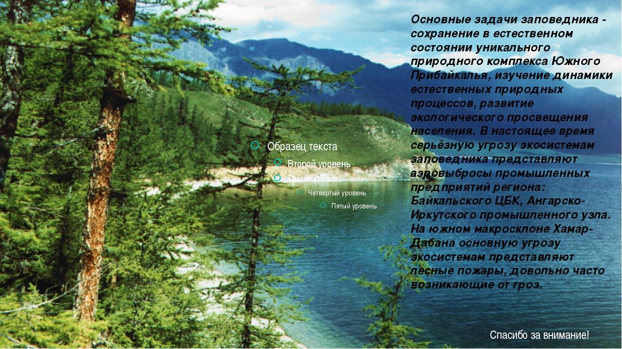 Основные задачи заповедника - сохранение в естественном состоянии уникальног...