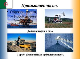 Промышленность Добыча нефти и газа Горно- добывающая промышленность