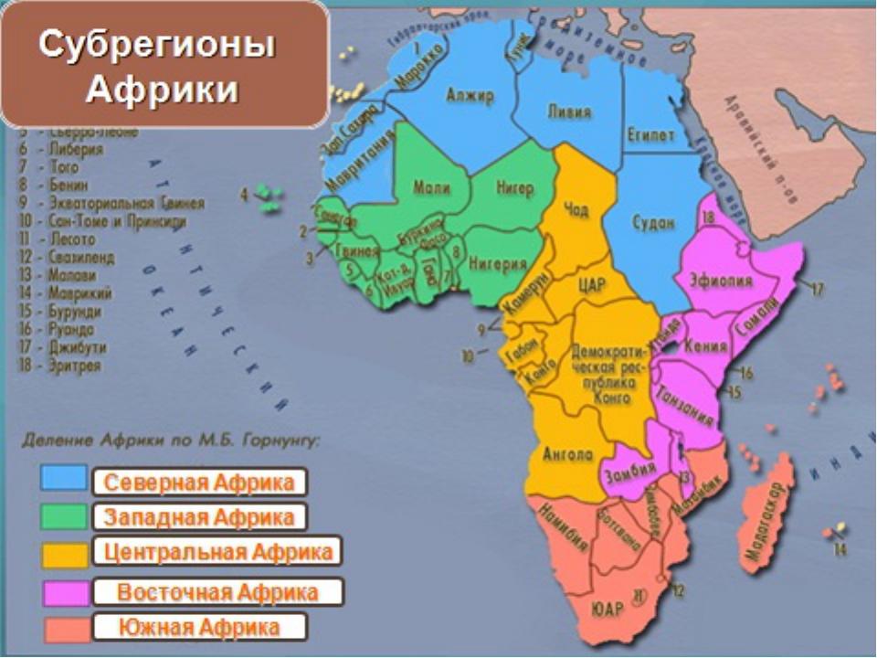 Районплотность, чел/км 2 причины северная африка юго-западная африка побережье средиземного моря побережье