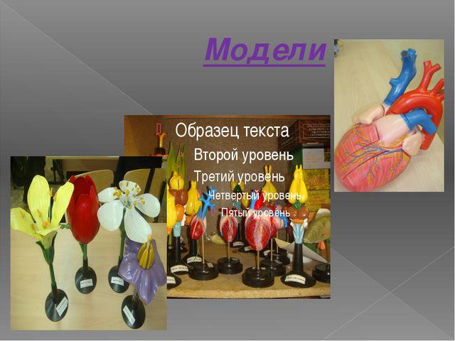 Модели