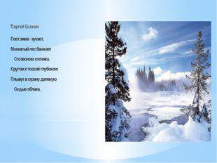 Сергей Есенин Поет зима - аукает, Мохнатый лес баюкает Стозвоном сосняка. Кр